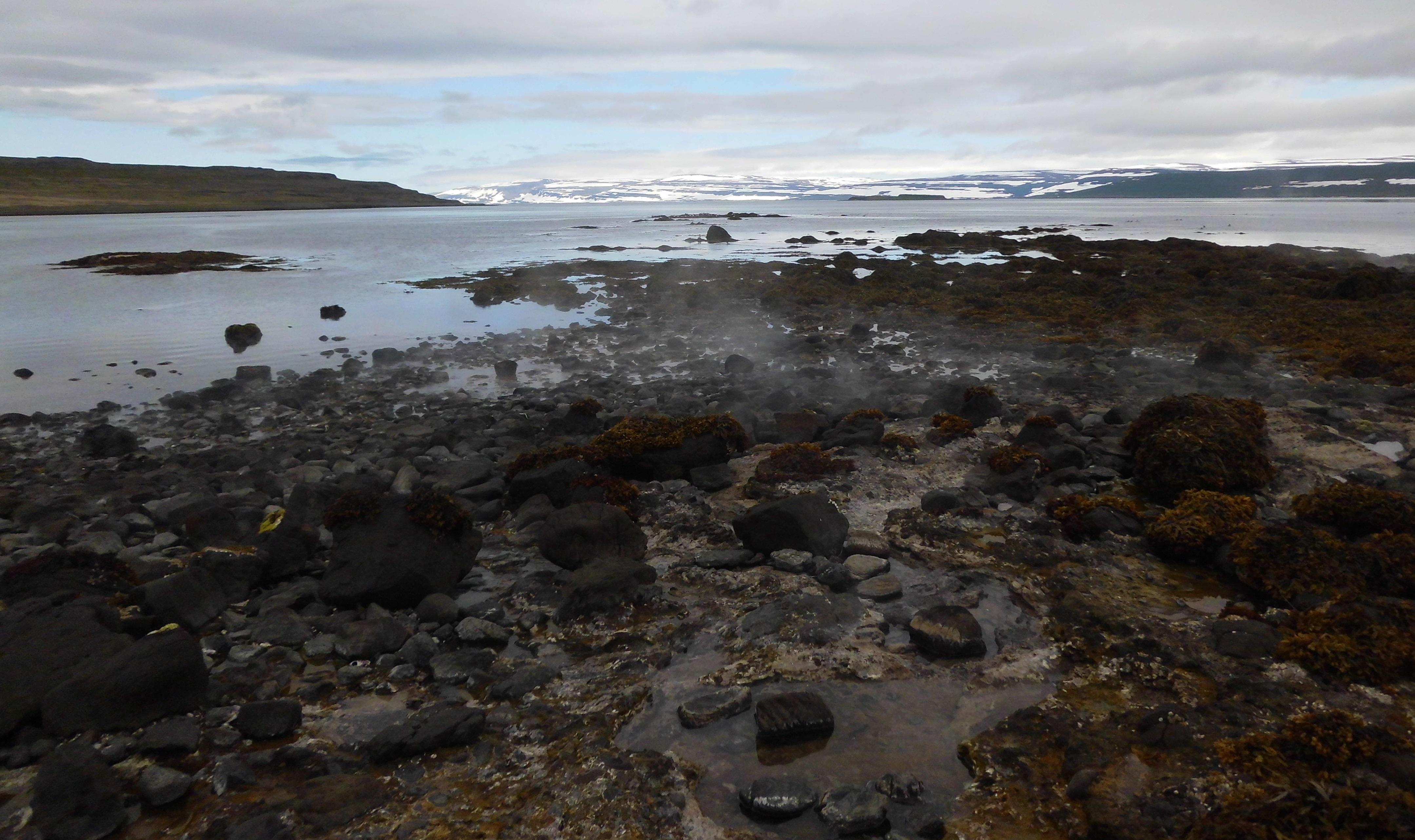 Blog 20.-28.6.2014 (Island, Tag 6) 1