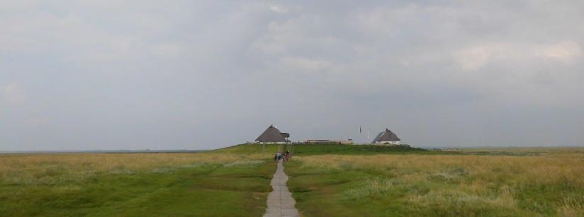 Blog 29.8.2012 (Hamburger Hallig)